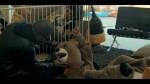 Taio Cruz - Hangover ft. Flo Rida 025